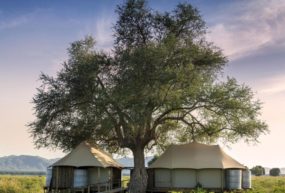 Nyamatusi Mahogany Camp